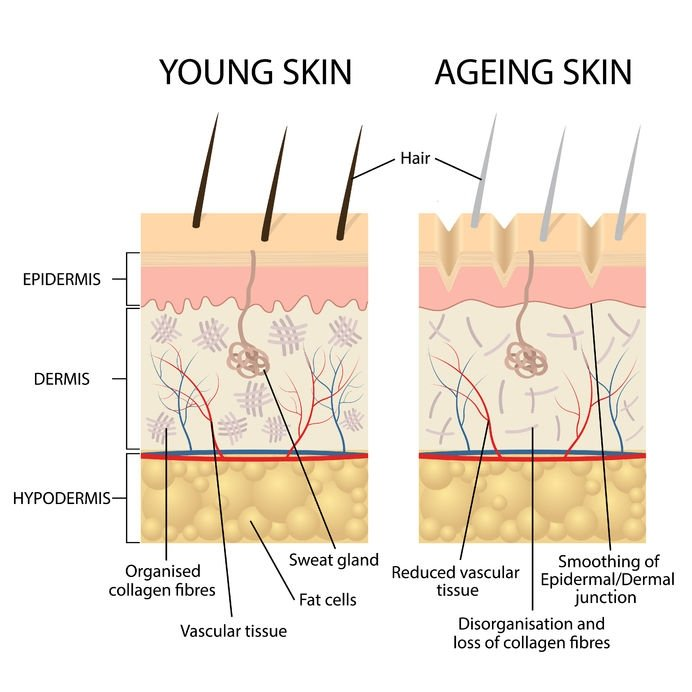 My Pure Skin Young Vs Old Skin